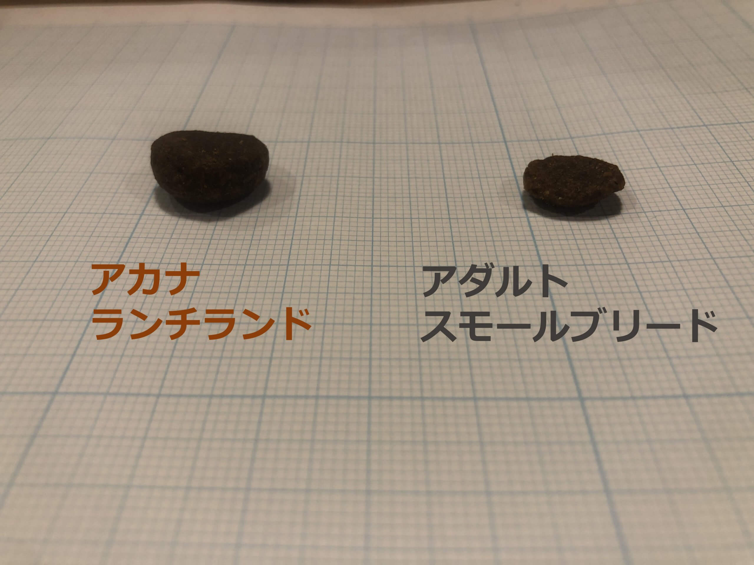 アカナランチランドとアカナアダルトドッグの粒の大きさ比較